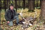 Осенняя охота на оленя