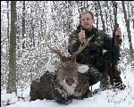 Охота на оленя в зимний период